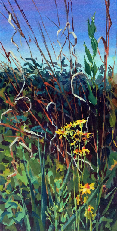 Prairie Matrix-Ragwort and Grasses
