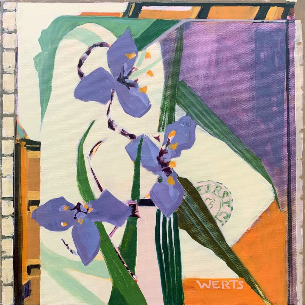 Cut Flowers Spiderwort 12x12